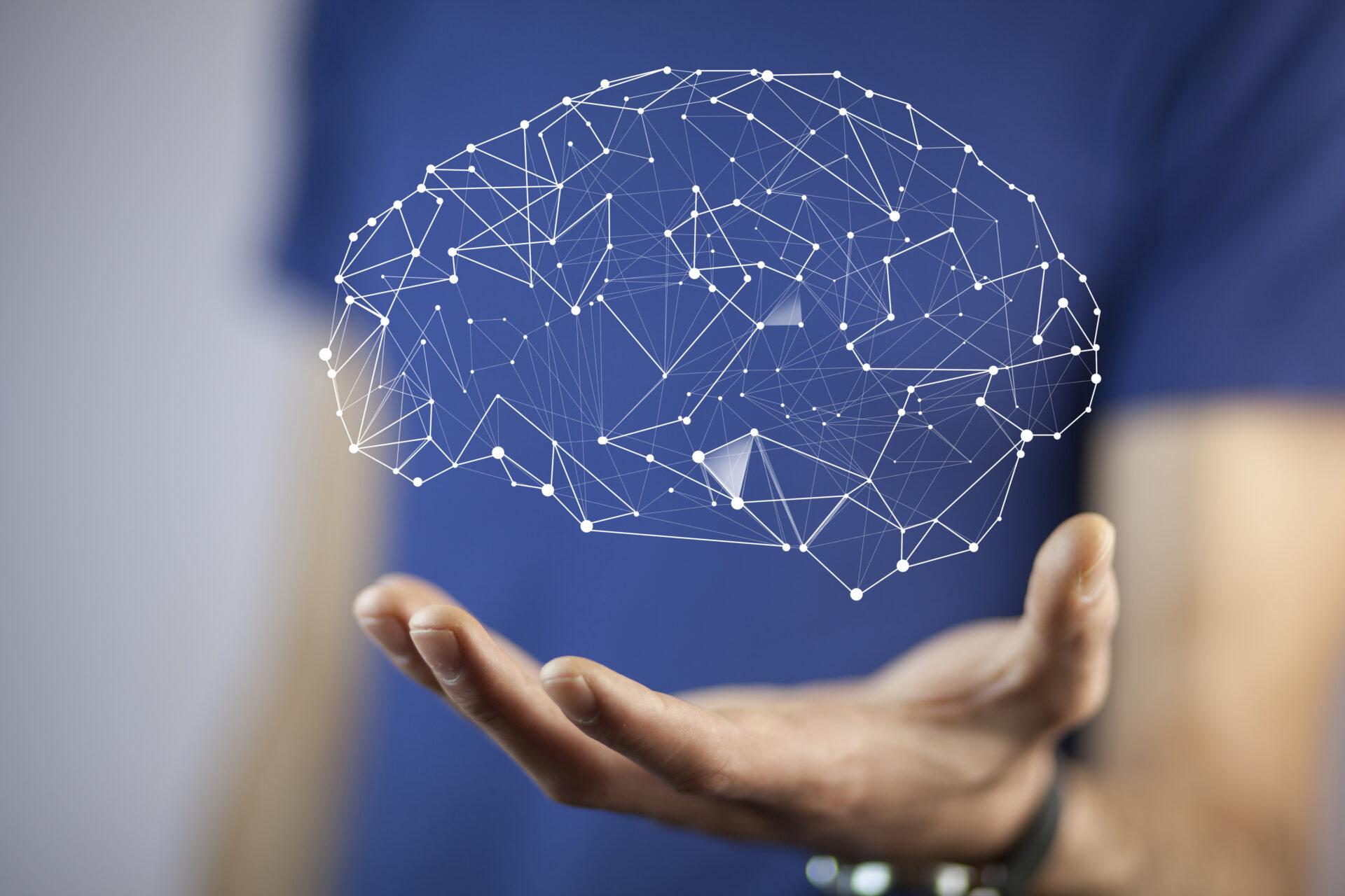 brainsite