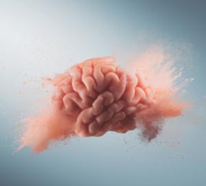 Neuroplasticiteit