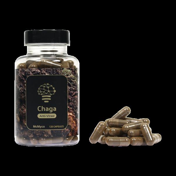 Chaga-1-600x600