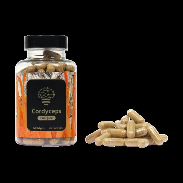 Cordyceps-1-600x600