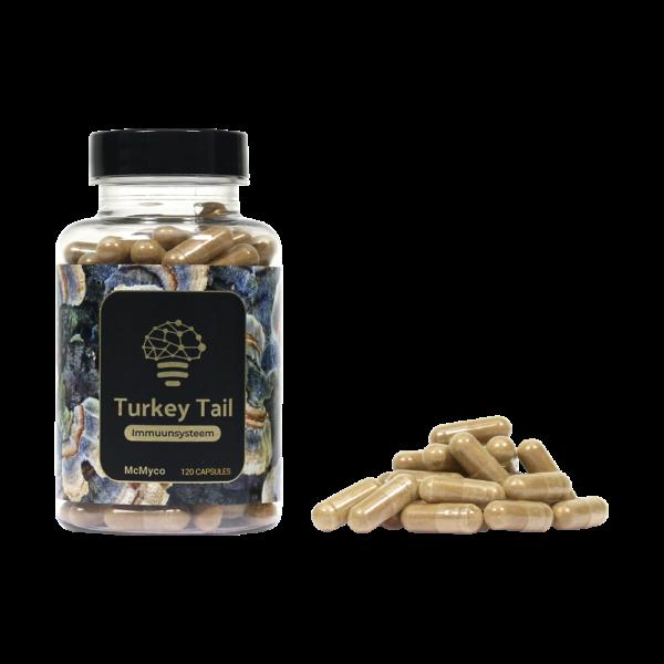 TurkeyTail-1-600x600